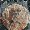 Cannibal Corpse - Tape / Vinyl / CD / Recording etc - The Bleeding Picture Disc