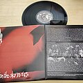 "At The Gates - Tape / Vinyl / CD / Recording etc - At the Gates The red in the sky is ours 12"" LP"