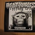 Agathocles/ Violent Noise Attack- Morally wrong/ Grind 'till deafness split 7""