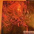 Carnage- Dark Recollections lp