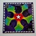 Steppenwolf - Tape / Vinyl / CD / Recording etc - Steppenwolf- The second lp
