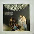 Steppenwolf - Tape / Vinyl / CD / Recording etc - Steppenwolf- Monster lp