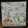 Phlebotomized- In search of tranwuillity 7""