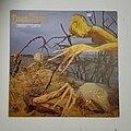 Dixie Dregs - Tape / Vinyl / CD / Recording etc - Dixie Dregs- Dregs of the earth lp