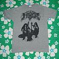 TShirt or Longsleeve - Immortal - Battles In The North grey reprint shirt