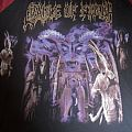Cradle of Filth - Tortured Soul Asylum longsleeve