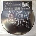 "Other Collectable - 7"" Split Single Napalm Death / Insect Warfare"