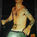 Pantera Posters Other Collectable