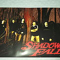 Shadows Fall - Forest group Photo Poster Other Collectable