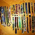 Other Collectable - My festival bands