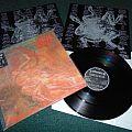 MORBID ANGEL - Blessed Are the Sick Tape / Vinyl / CD / Recording etc