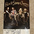 Black Stone Cherry - Other Collectable - Black Stone Cherry signed poster