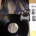Ascended - Other Collectable - ASCENDED