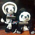 Freakin' pandas.