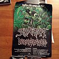 Suffocation and Decapitated Australian tour 2015 poster