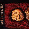 Sepultura Roots 1996 tour shirt!