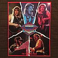 Night Ranger - 7 Wishes tour program Other Collectable