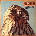 Blackfoot - Tape / Vinyl / CD / Recording etc - Blackfoot - Marauder