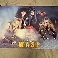 W.A.S.P. - Other Collectable - W.A.S.P. - Classic poster