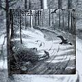 Burzum - Tape / Vinyl / CD / Recording etc - Burzum Hvis Lyset Tar Oss LP