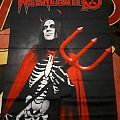Wednesday 13 flag Other Collectable