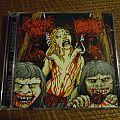 Carnivore Mind/Hipermenorrea split CD Tape / Vinyl / CD / Recording etc
