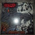 """2017 Cosmic Key Creations 12"""" clear vinyl reissue of Sentenced's Shadows of Past."""