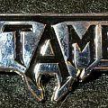 Testament pin Pin / Badge