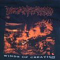 TShirt or Longsleeve - Decapitated - Winds Of Creation shirt