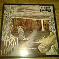 Funebre-Children of the Scorn Tape / Vinyl / CD / Recording etc