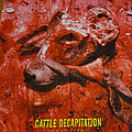Cattle Decapitation - Other Collectable - Cattle Decapitation - Human Jerky Flag