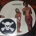 """Dwarves """"Blood Guts and Pussy"""" 1990 limited edition picture disc"""