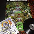 "Agoraphobic Nosebleed - Tape / Vinyl / CD / Recording etc - AGORAPHOBIC NOSEBLEED ""Agorapocalypse Now"" limited LP 400 black vinyl"