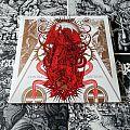 Schammasch - Tape / Vinyl / CD / Recording etc - Schammasch - Contradiction ( Vinyl )