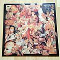 Carcass - Reek Of Putrefaction ( Vinyl )