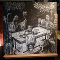 Graveyard Ghoul/Cryptic Brood - Split