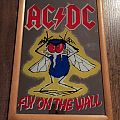 Ac/dc mirror fly on the wall Other Collectable