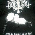 "Beastcraft ""Into the burning pit of Hell"" T-Shirt"