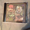 Acid Witch Witchtanic Hellucinations CD