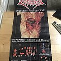 Dismember - Other Collectable - Vintage Dismember Promo Poster