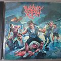 Insanity Alert debut Tape / Vinyl / CD / Recording etc