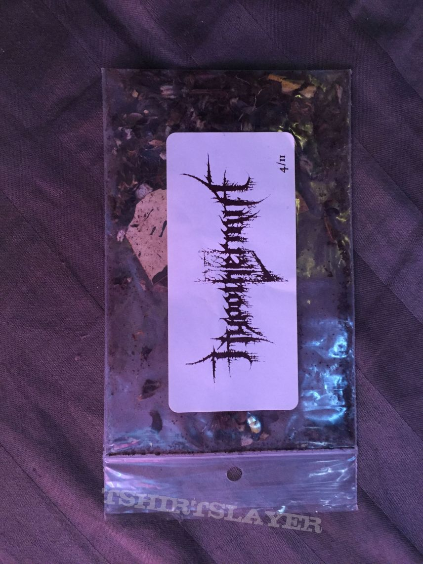 bag with dead plants and artwork