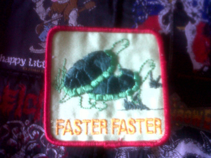 Patch - turtle patch