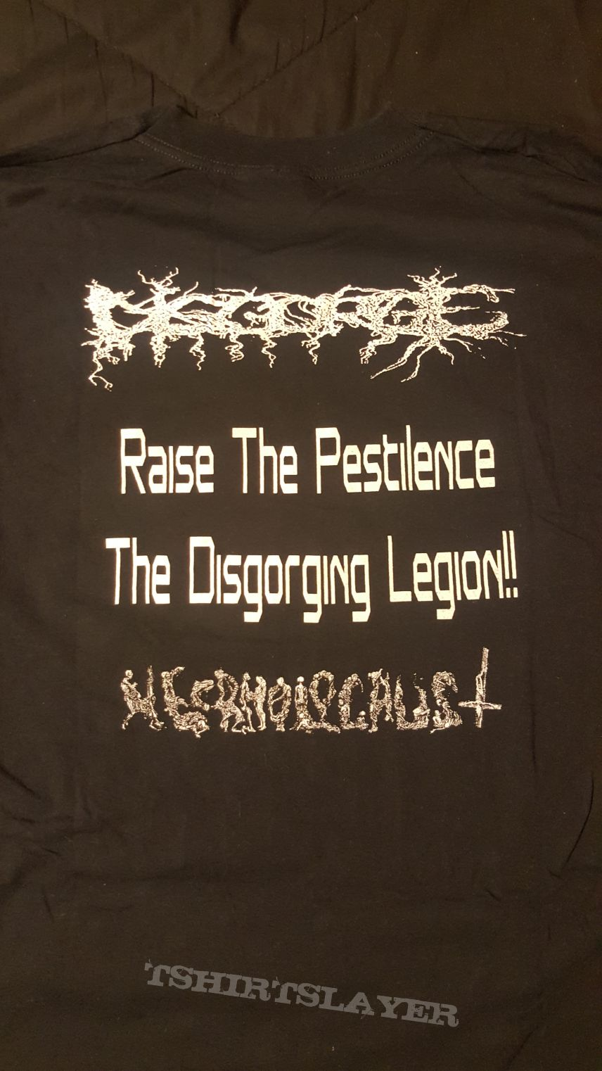 Disgorge - Necrholocaust