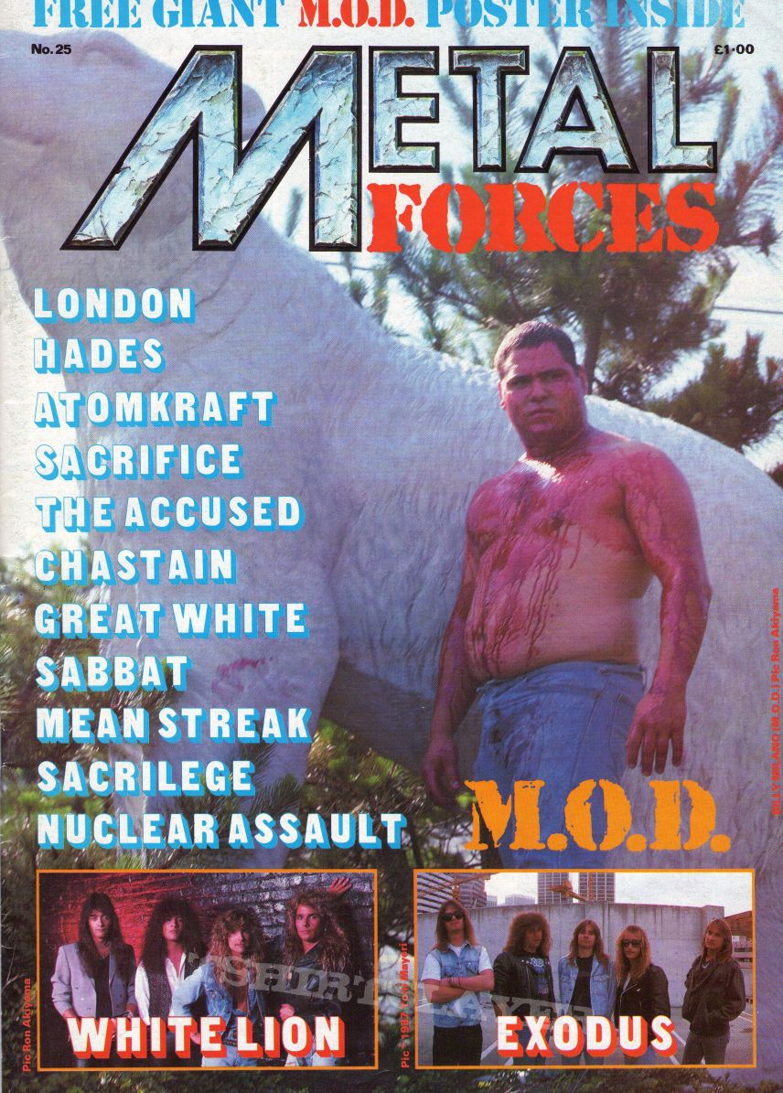 My Metal Forces Mag. Collection