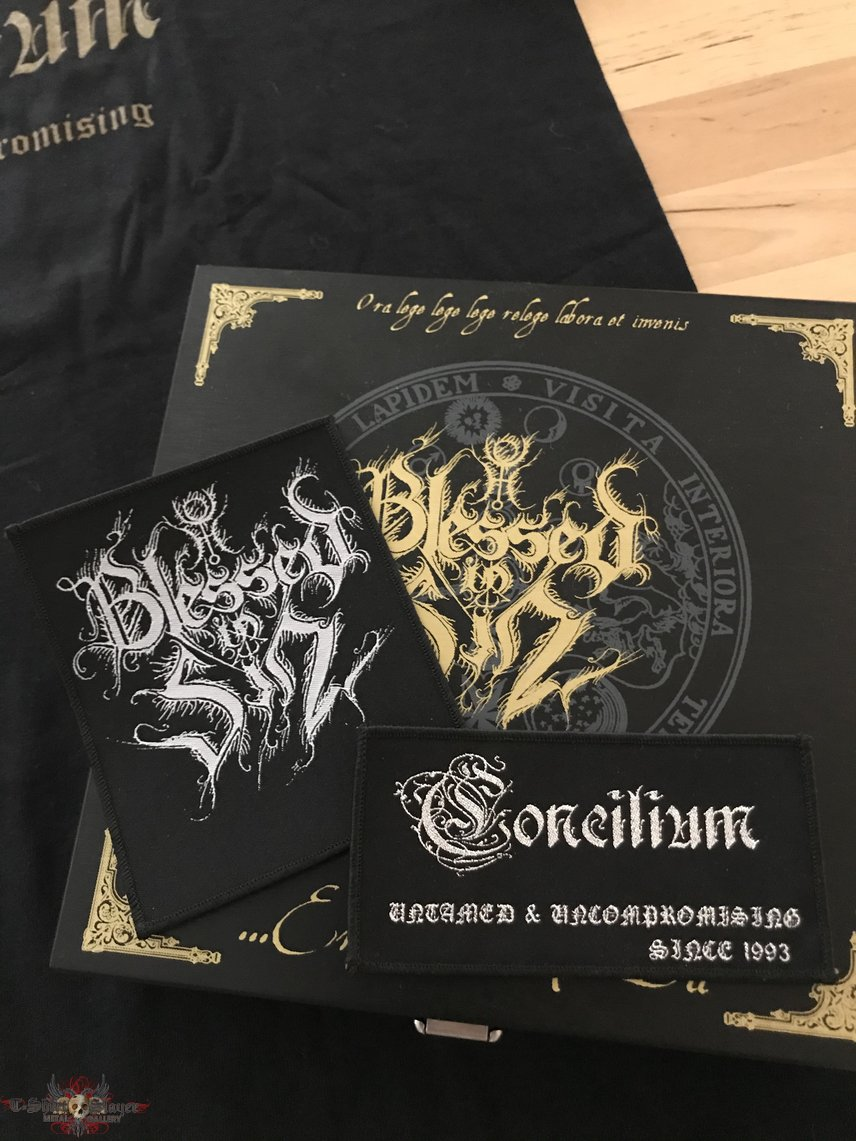 Blessed In Sin - Concilium TS