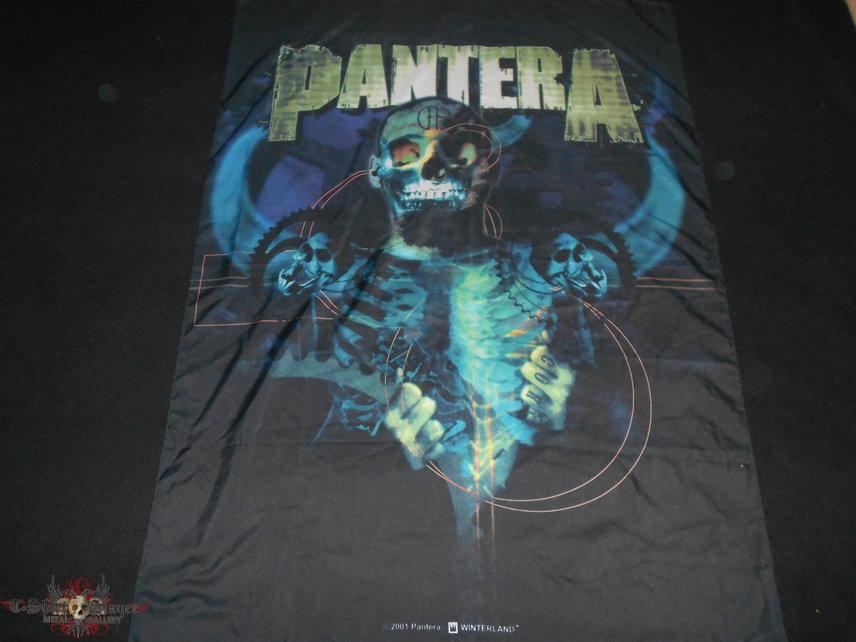 Pantera / Flag
