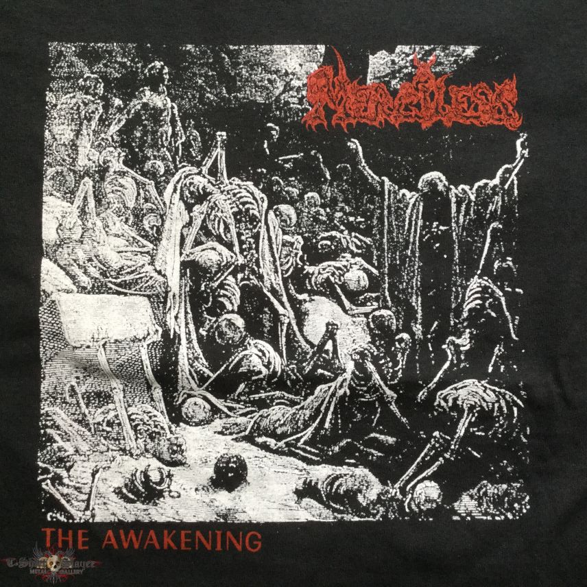 Merciless - The Awakening TS