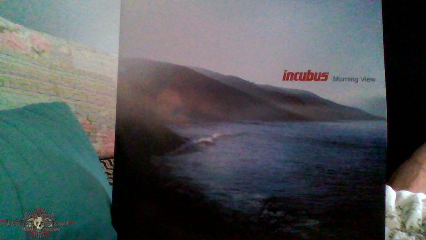 Incubus Morning View LP