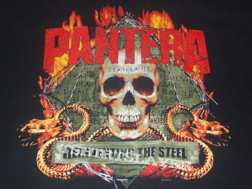 pantera reinventing the steel - photo #11